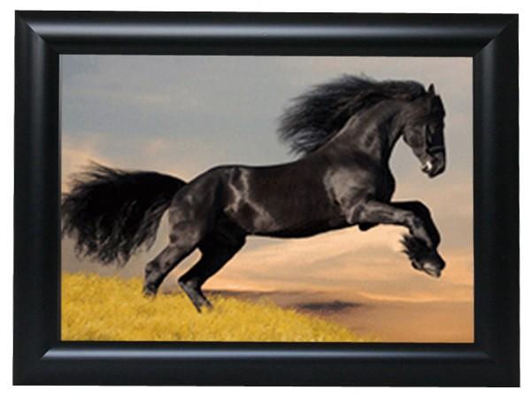 3d effekt bilder wandbild effektbild bild wandbilder mit rahmen pferd mustang 105. Black Bedroom Furniture Sets. Home Design Ideas