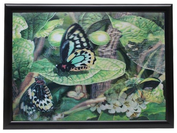 3d effekt bilder wandbild effektbild bild wandbilder mit - Wandbilder aus stoff ...